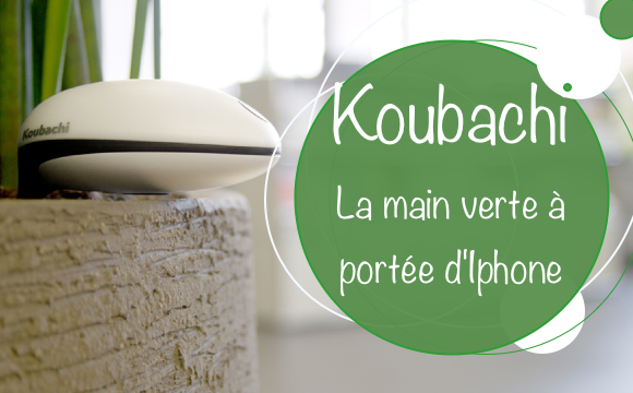 Test Koubachi : la main verte à portée d'Iphone